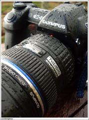 Olympus e-1 + zd ED 12-60mm weatherproof (sam4605) Tags: rain ed olympus e1 weatherproof zd 1260mm splashproof
