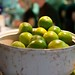 Frehs limes at Greenhouse