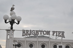 brighton_beach_006 (Peter-Williams) Tags: uk sky sussex pier brighton palacepier