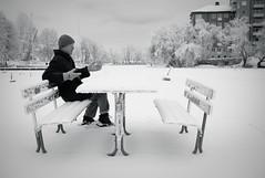 with a drop of milk please (v.ir.g.il.e) Tags: winter bw snow vinter frost sweden stockholm nb sverige sn 08 reimersholme