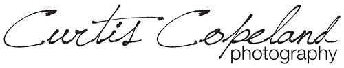 Logo_10X2_Banner