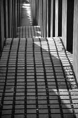 Light and waves B&W (AlexJ (aalj26)) Tags: light shadow bw white black berlin branco arquitetura architecture holocaust nikon memorial do pb preto jorge e alexander peb alemanha petereisenman holocaustmahnmal concreto holocausto d90 alexj burohappold aalj26 alexanderaljorge