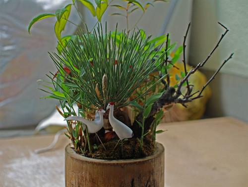 grullas florecidas