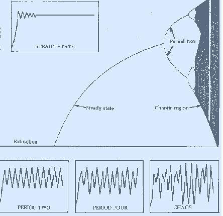 ecuador-fractals