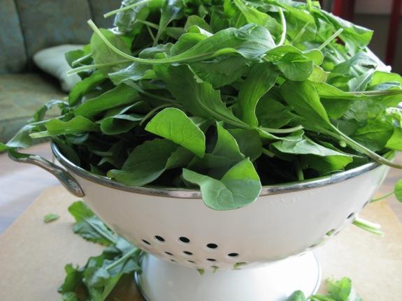arugula smashed potato salad herbs 001