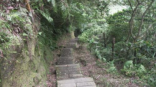 皇帝殿登山步道_25_還好一路都是下山_2011_05_07