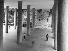 (Leonardo Martins) Tags: brazil bw building art arquitetura riodejaneiro architecture downtown arte mosaic contemporary centro central mosaico brasilien an sidewalk lecorbusier brasilia brasile prdios brsil mec calada brazilia contemporneo brazili brasiilia  brezilya  brezil brasils affonsoeduardoreidy brazylia  brazlie brazilija brazlia brazili brasila   jardimsuspenso brasilen  panasoniclumixfz18      carlosleo ernanivasconcellos jorgemachadomoreira brazylii  brazlija   bhrasal brazilijo  brazlii brasilium brail   pirts brazlijas  braxin suspendedgarden oscarniemayier