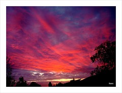 Sunrise on 24 october . (Franc Le Blanc) Tags: autumn red sky tree clouds sunrise october frommybalcony drunen
