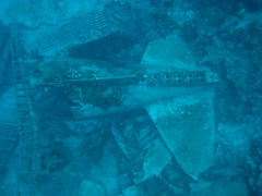Sunday1-16 (mtarlock) Tags: plane underwater bahamas wreck dc3