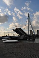 Erasmusbrug open 2 (sn3akysn4ke) Tags: rotterdam open erasmusbrug