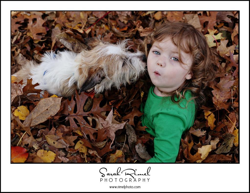 leaf fun 35
