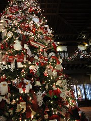 Hotel Del Coronado - tree-1