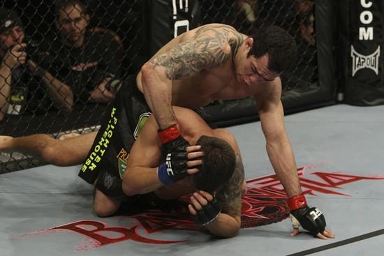 Bayonetta & UFC