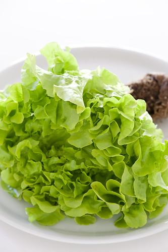 salad & noodles-7