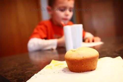 . doughnut nugget, not muffins .