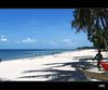 Pemba. Playa (e_velo (εωγ)) Tags: sea paisajes canon landscapes mar travels viajes beaches viatges playas mozambique alga pemba paisatges platges powershota520 moçambic peopleenjoyingnature theoriginalgoldseal flickrsportal