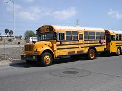LAUSD 3971 (crown426) Tags: international bluebird schoolbus losangelesunifiedschooldistrict