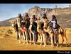 In Front of Kaf Ejjnoon ! (Bashar Shglila) Tags: city mountains sahara festival desert libya camels outfits tuareg ghat kaf libyen صحراء جبال ليبيا العالمي líbia ابل مهرجان libië مهاري libiya السياحي liviya libija غات либия الجنون توارق كاف ливия լիբիա ลิเบีย lībija либија lìbǐyà libja líbya liibüa livýi λιβύη ejjnoon ايموهاغ هقار hdrfascinantrachedmiladitunisie
