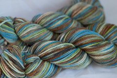 Freedom  on 3-ply Merino Wool - 3.5 oz. (...a time to dye