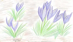 3.17.10 - Sketchbook Page