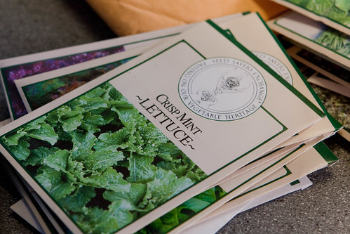 Heirloom Lettuce Package