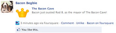 """""""Bacon just ousted Rod B. as the mayor of The Bacon Cave!"""""""