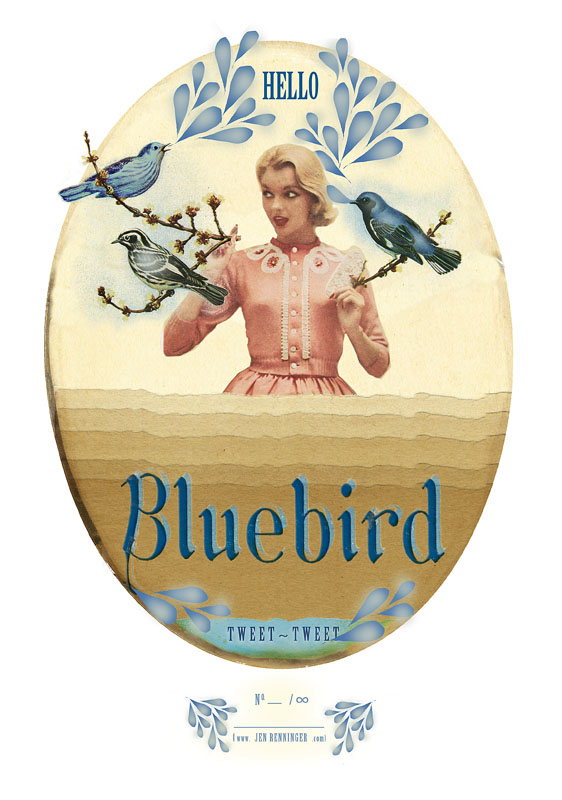 Hello Bluebird tweet tweet