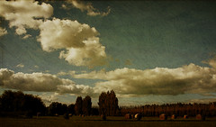 harvest (seaChange41) Tags: christchurch sky clouds textures hay bales