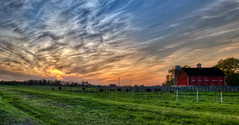 Fermilab's Buffalo Farm - about 45 minutes outside Chicago (Mister Joe) Tags: sunset panorama chicago barn landscape illinois buffalo nikon joe batavia fermilab hdr buffalofarm