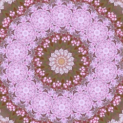 pink lace copy (SueO'Kieffe) Tags: nature digital photoshop patterns kaleidoscope mandala spirituality