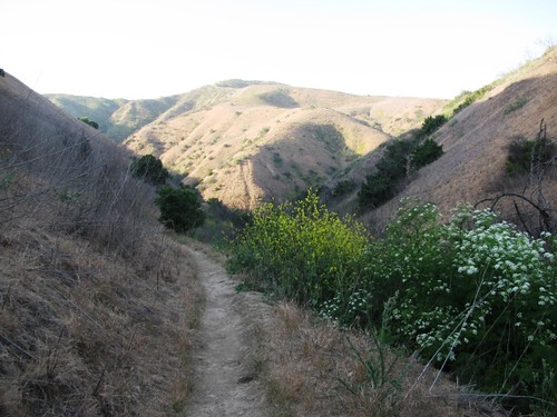 Chino Hill Sunset Hike
