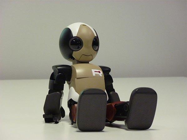 Robot ROPID Japón