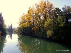 Birs bei Dornach (Marlis1) Tags: trees water reflections river switzerland solothurn birs dornach marlis1 beautyofwater