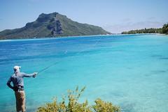 Casting in the blue lagoon, Maupiti