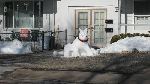 snow kitty 2009 001