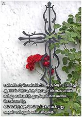 - 9 (  !!) (aakoshiva) Tags: poem tamil kavithai tamilkavithai 3ifactory kavithaigal shivf1 aakoshiva boomiyilvaanavil