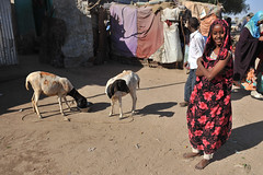 MIT_0104-Edit (Mitya Aleshkovsky) Tags: travel somalia somaliland