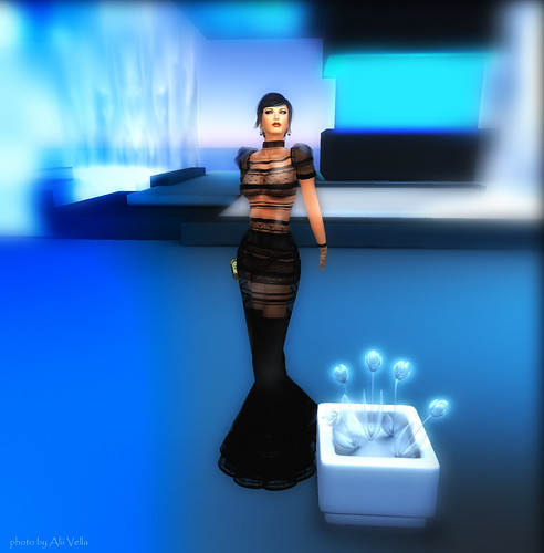 Venus - Anubis Style