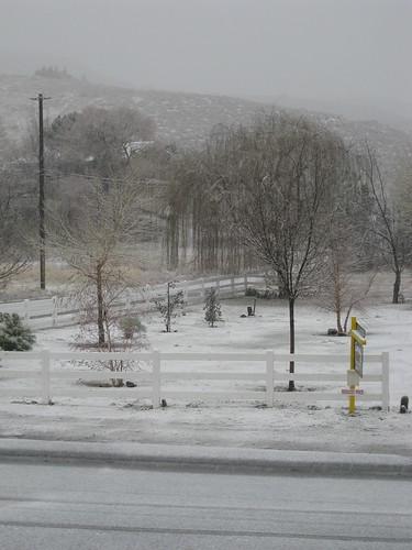 Snow DAY! 004