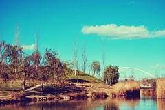 (Raquel Malln) Tags: blue parque trees sky water valencia clouds de landscape skin feel ducks breeze cabecera