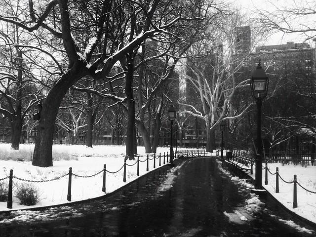 snow in Washington Square Park #walkingtoworktoday