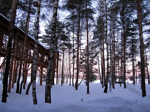 why Muscovites love their dachas.... by Esthr.