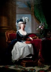 Portrait of Marie Antoinette, Queen of France, Elisabeth Louise Vigee Le Brun, ca 1788 (Tiz_herself) Tags: france art portraits neworleans queens museums royalty marieantoinette 2010 d300 neworleansmuseumofart