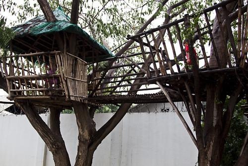treebridgesmall