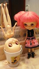 *9/365* Hallo meets her sister Nasty