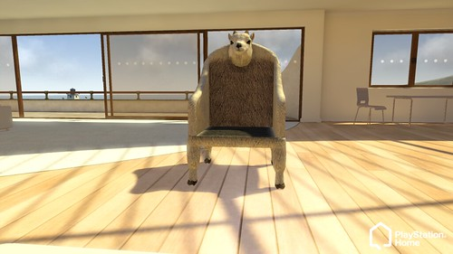 Home Tester Goat Chair