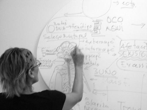 cartografia: sistema nervoso