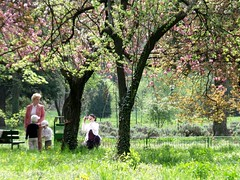 An April Saturday (marinela 2008) Tags: park pink people black tree green apple beauty grass fence garden bench cherry photography spring alley blossoms picture saturday april bucharest bucharestbotanicalgarden marinela2008 20100417