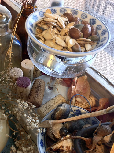Collection of seeds, shells, corks, bones, and flowers