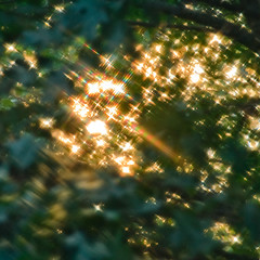 In the sky with diamonds (Sky Noir) Tags: morning light sun sunlight window colors early rainbow screen refraction sparkling skynoir bybilldickinsonskynoircom